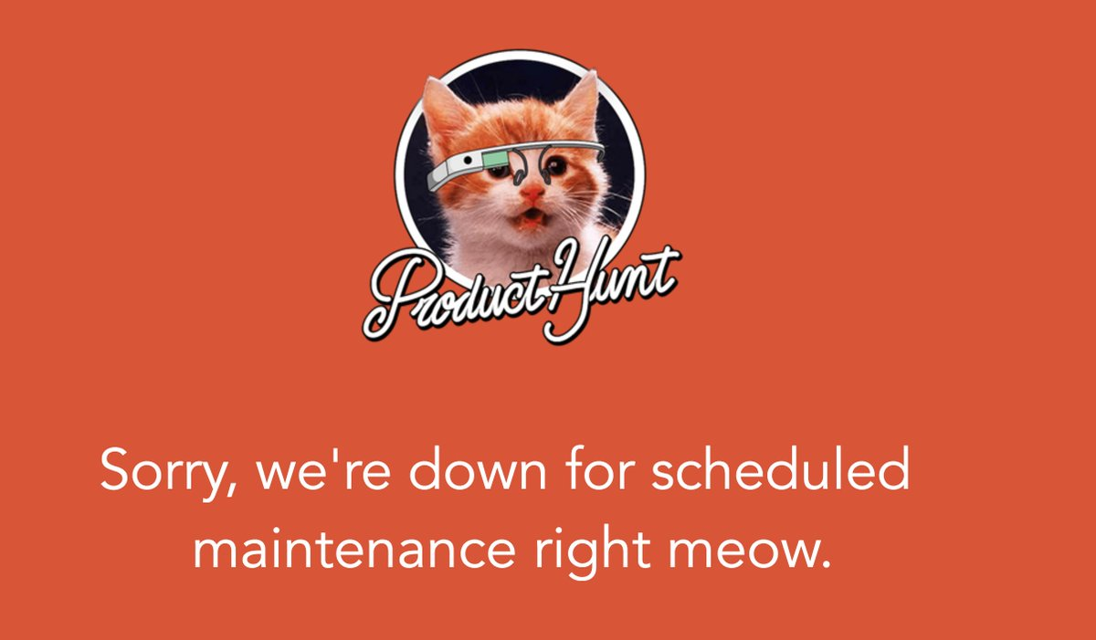"""Product Hunt logo with photo of a cat and the caption """"Sorry, we're down for scheduled maintenance right meow"""". Screen capture."""