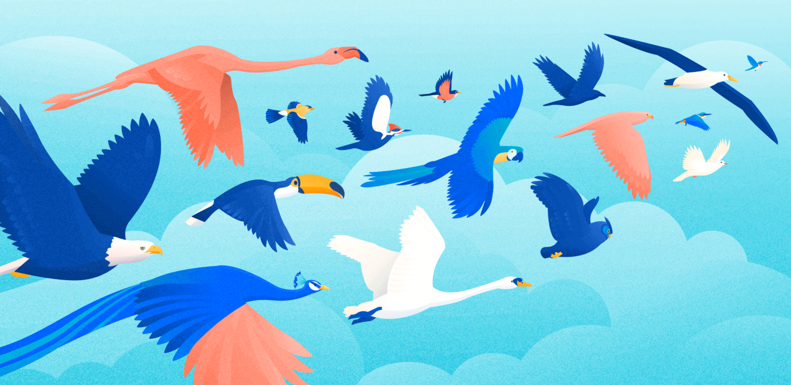 A flock of disparate birds, signifying the 16 personality types