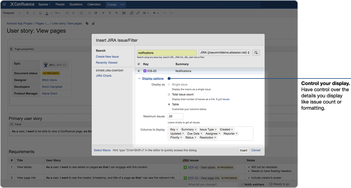 Jira Issue Confluence - display options jira issue dialogue