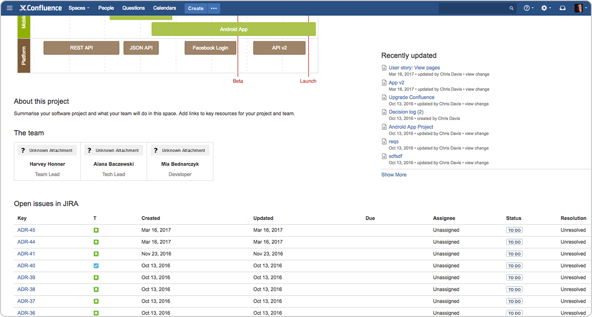 Jira Issue Confluence - single source of truth for all jira issues